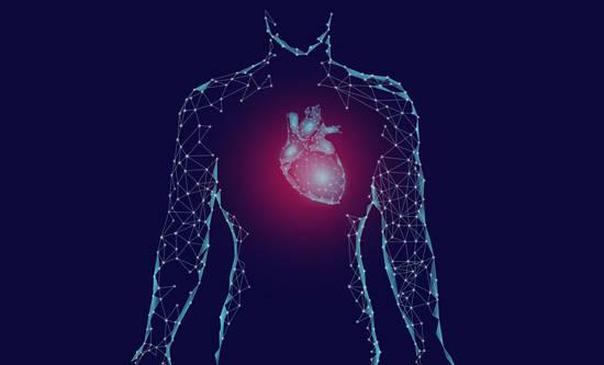 日常生活中预防心脏病的注意事项