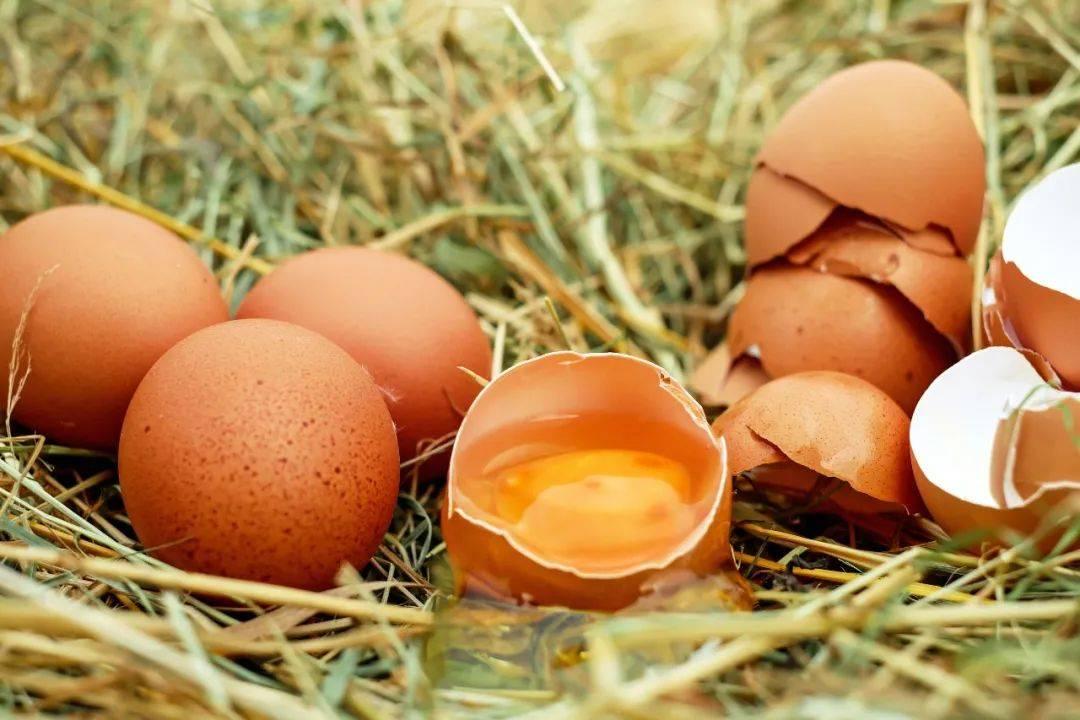 鸡蛋的过敏风险