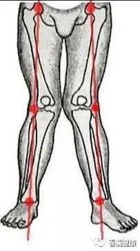 X型腿的成因