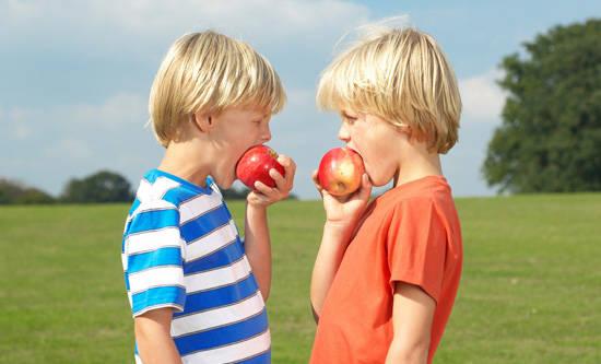 苹果能增强孩童的记忆力
