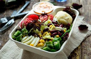 只吃蔬菜能保持健康吗?