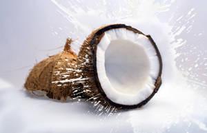 椰子的功效作用及食用禁忌