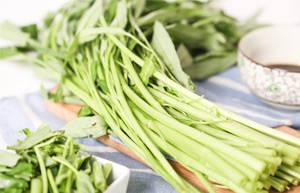 蕹菜(空心菜)在中医里的功效作用