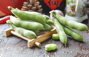 蚕豆的中医功效作用