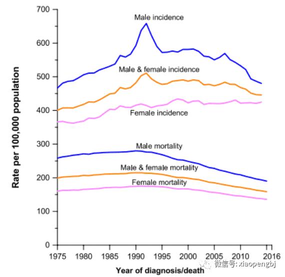 男女性肿瘤发病率