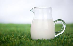 牛奶怎样喝才健康?