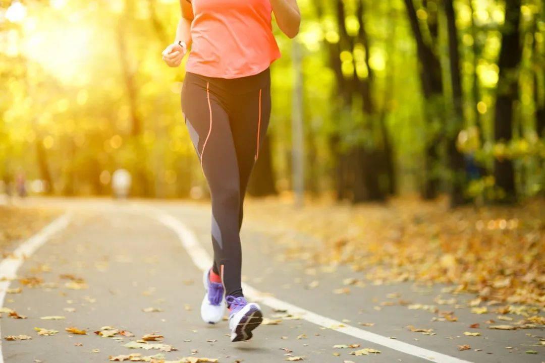 在秋天跑步锻炼