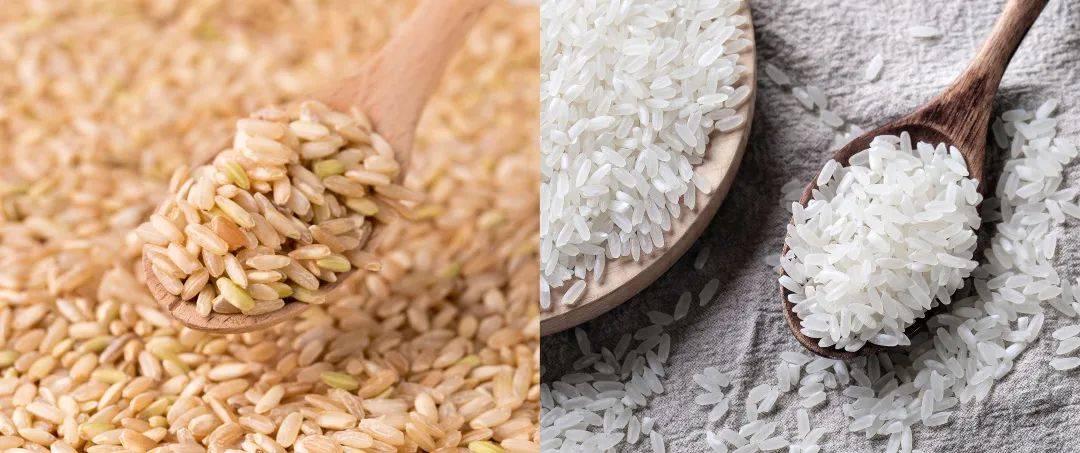 糙米与大米