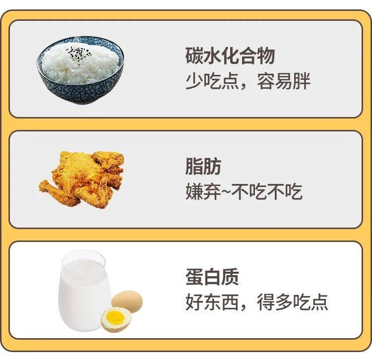 人体3大营养物质