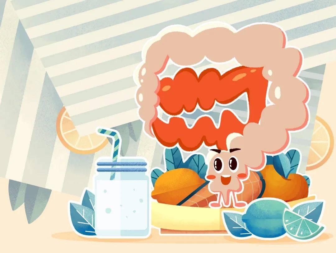 益生菌插画