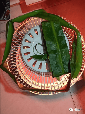 烤水鬼蕉叶片