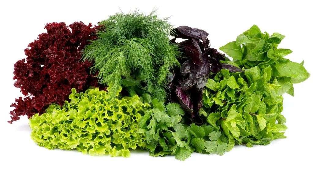 春季要多吃蔬菜