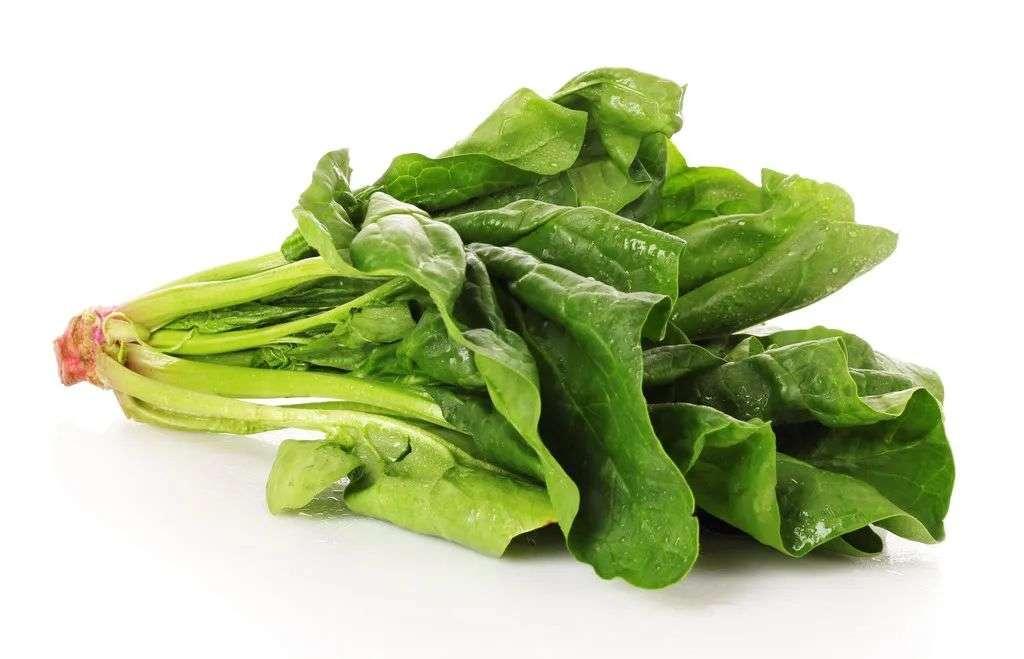 春季多吃菠菜