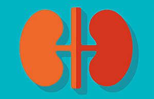 如何判断肾脏是否健康及日常护肾方法