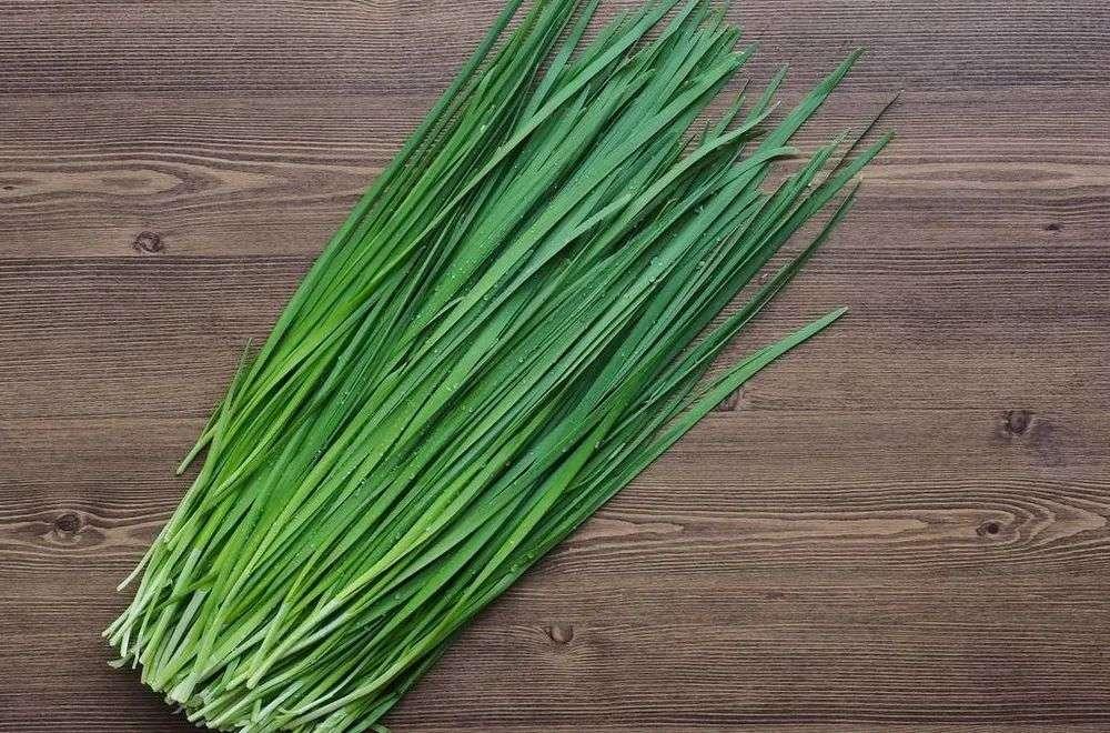 春季第一菜-韭菜