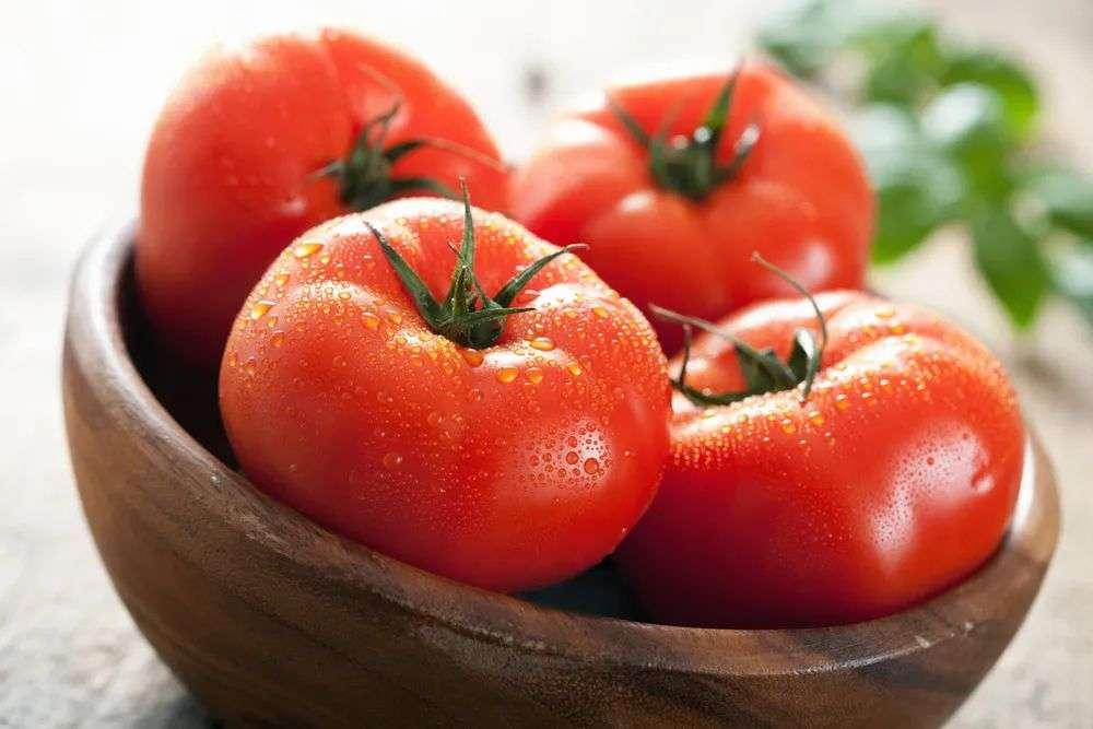 优质的西红柿