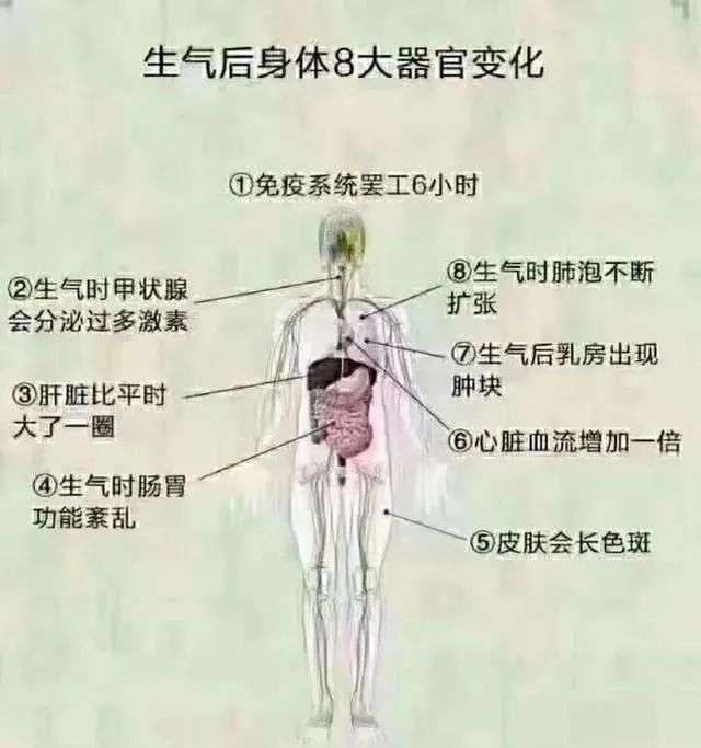生气后身体器官的变化