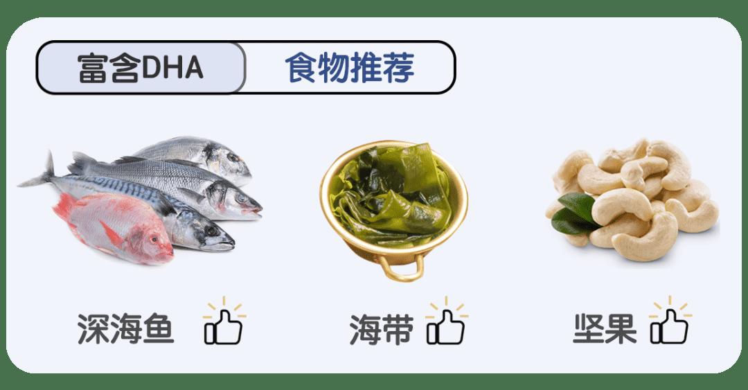 富含DHA的食物