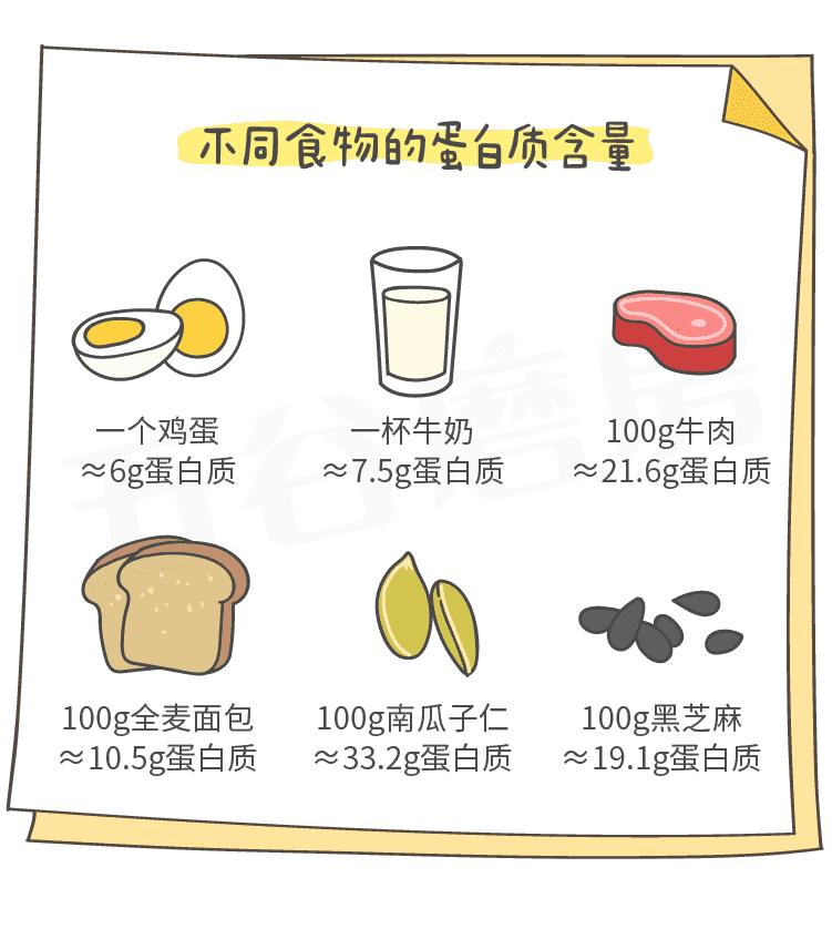 不用食物蛋白质含量