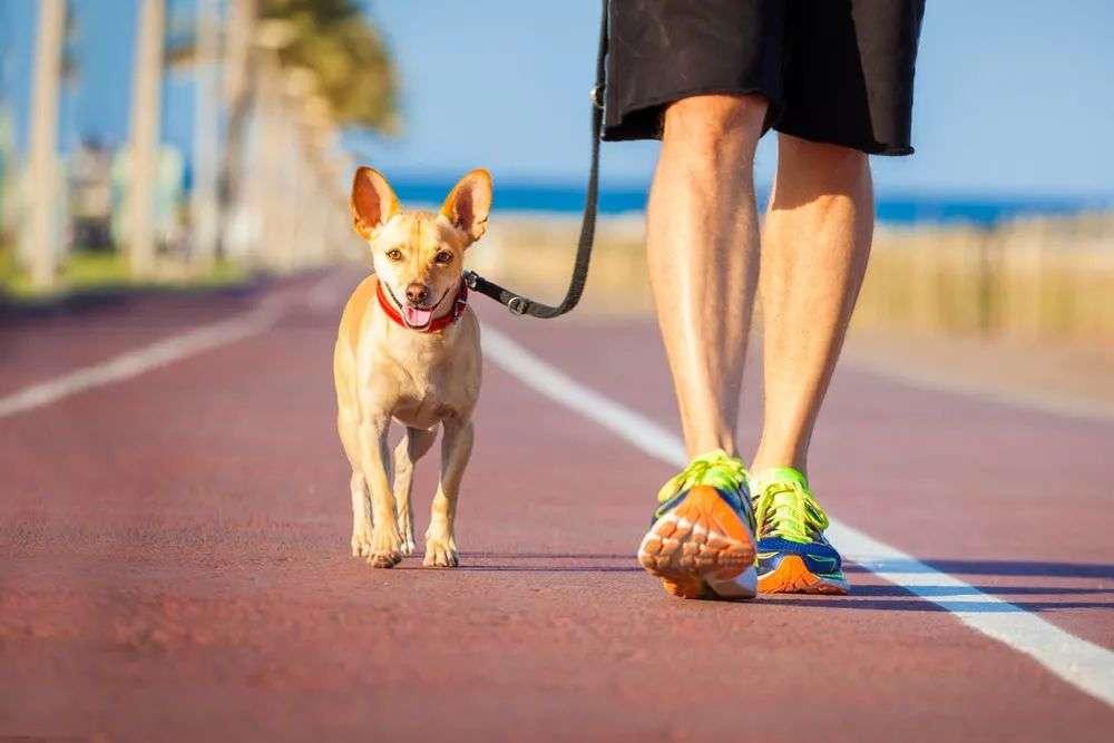走路能降血压、血糖