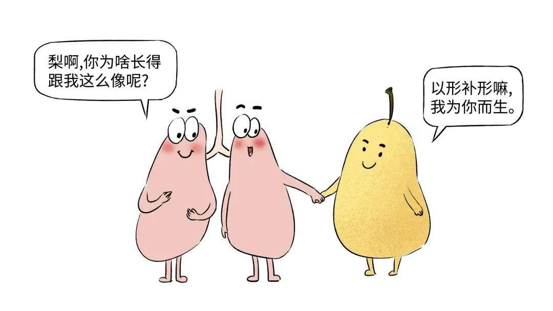 秋季润燥食物梨