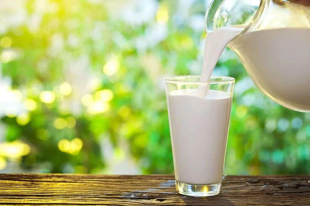 含钙高的食物-牛奶